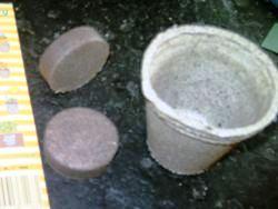 Torfquelltopf und Substrat Pressling