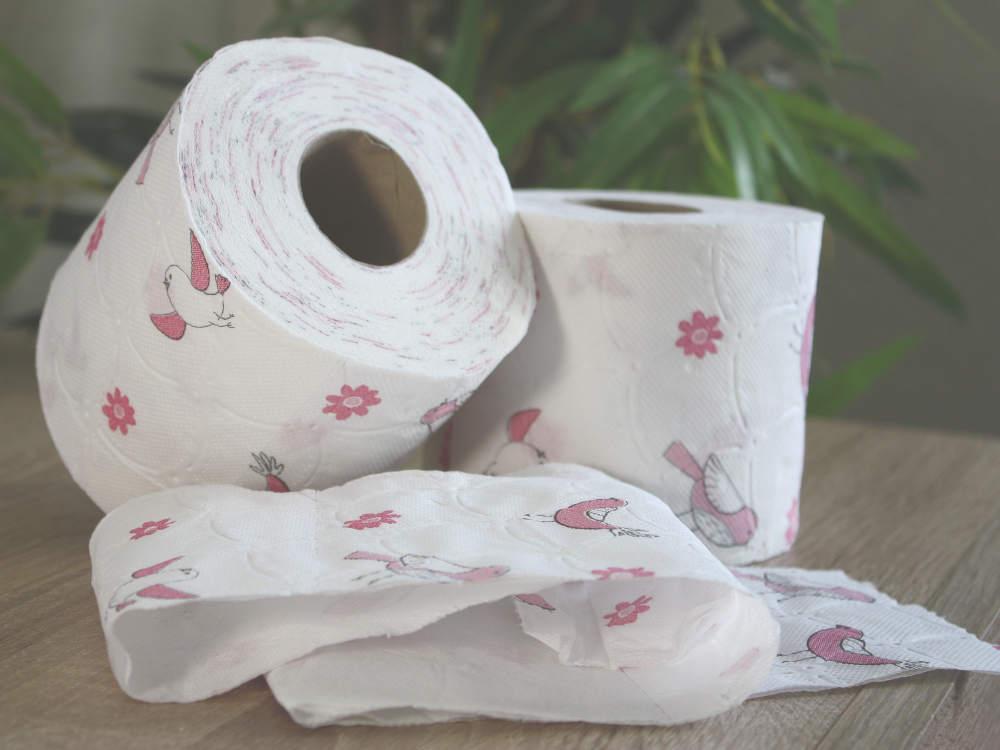 Wie hoch ist der Toilettenpapier Bedarf pro Person?
